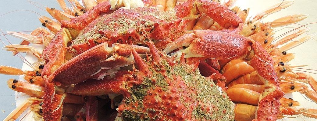 4 – Plateaux de fruits de mer